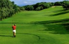 The-westin-golf-resort-and-spa-playa-conchal Guanacaste.jpg