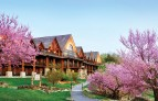 Big-cedar-lodge Branson.jpg