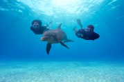 Atlantis-paradise-island Nassau 2.jpg