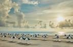 The-breakers-palm-beach 5.jpg