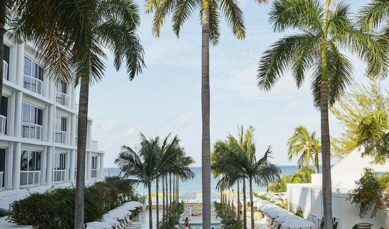 Palm-heights-grand-cayman-bwi Meetings.jpeg